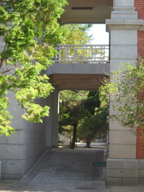 「同期の桜」の桜の木がある中庭は桜の季節に入れるそうです。