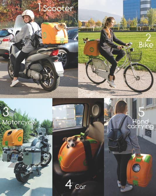 pet-on-wheels-carrier-motorcycle-bicycle-2-1